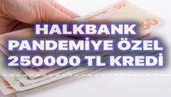Halkbank Pandemiye Özel 250 Bin TL İhtiyaç Kredisi Kampanyası