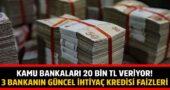 Kamu Bankalarından 20 Bin TL İhtiyaç Kredisi Kampanyası Geldi!